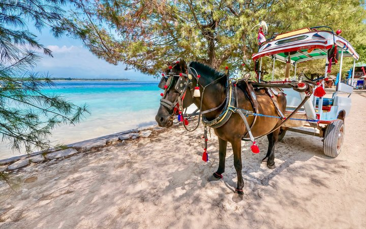 A brown colored horse is harnessed to a small passenger carriage which is decorated with festive, bright colors. The horse is standing on beautiful white sand next to the turquoise blue sea.